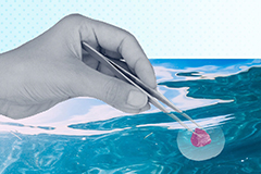 Illustration of hand putting iron in the ocean